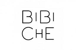 Logo Bibiche - Zee Média