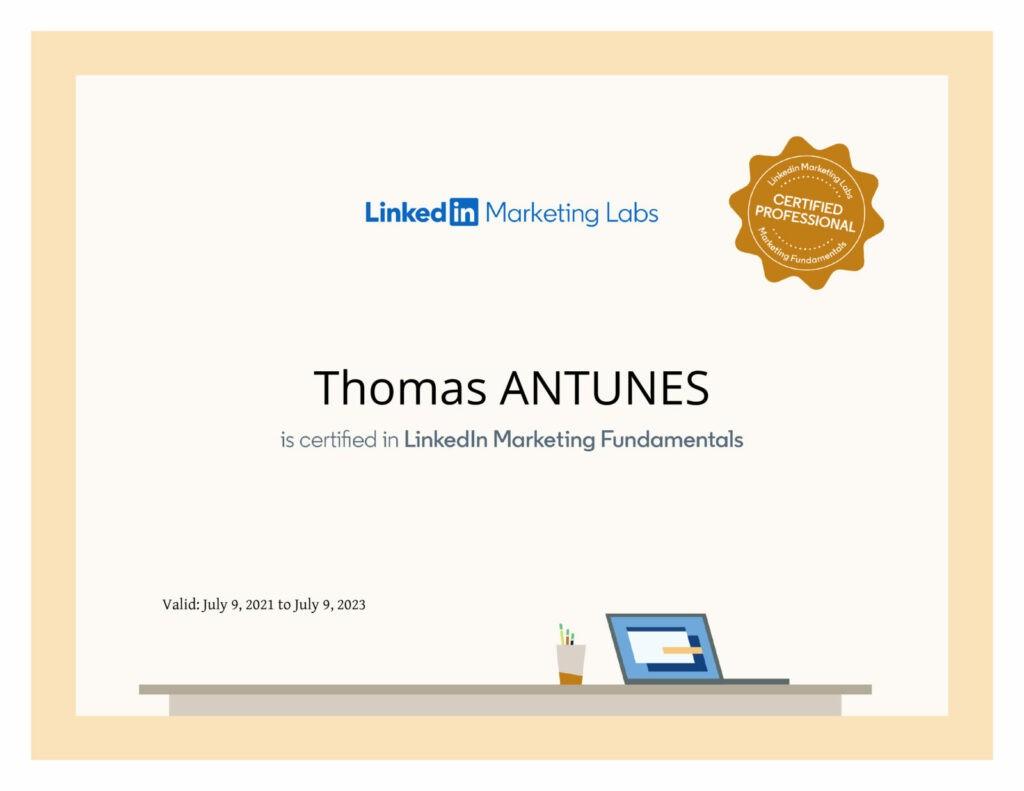certification linkedin ads marketing labs thomas antunes zee media